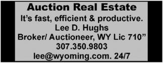 Auction Real Estate